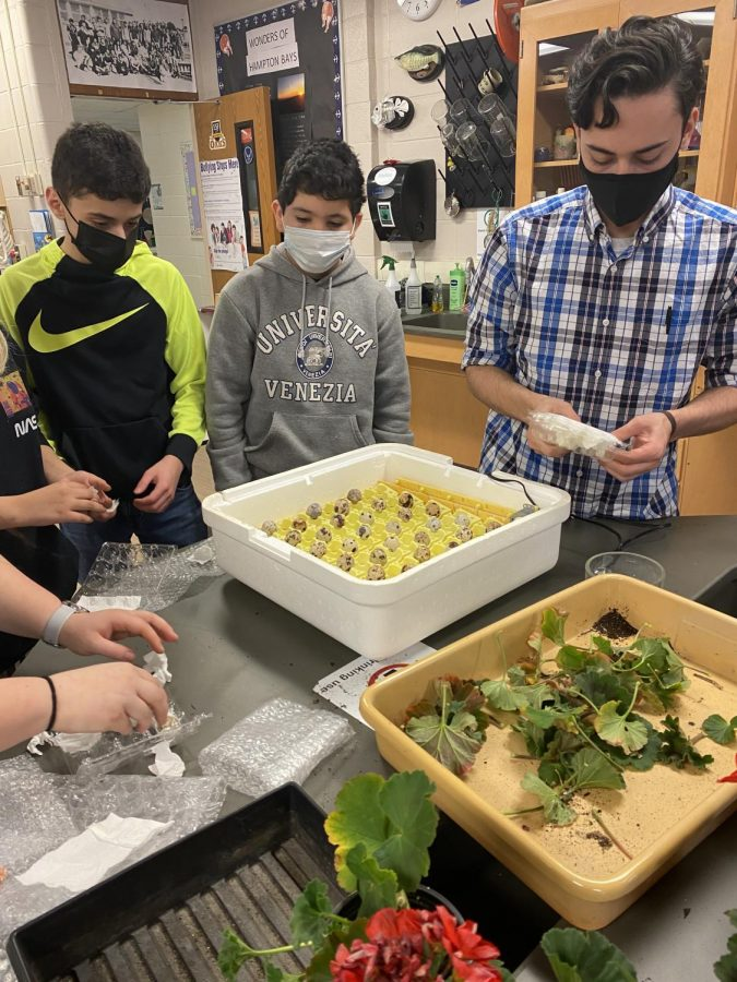 Members of the science club worked on the green house at their meeting on March 11.